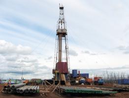 Геолого-промышленная оценка месторождений минерального сырья для нужд нефтегазовой отрасли
